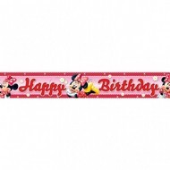 Banner folie Minnie & Daisies