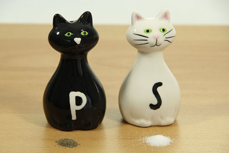 Solnite Pisica alba - Pisica neagra