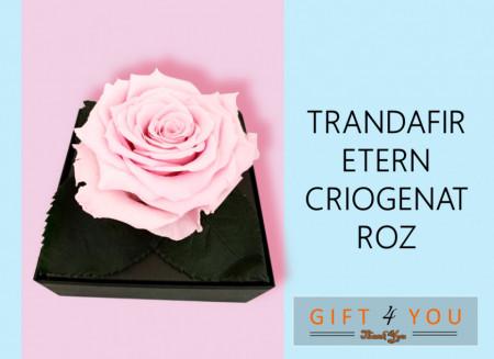Grace - (Audrey Hepburn) - Selectie cadou Ready-To-Give