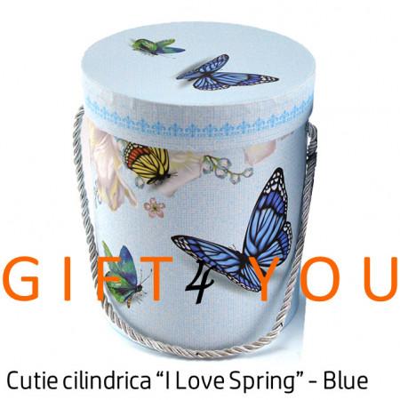 """Cutie cadou """"I Love Spring"""" - Blue"""