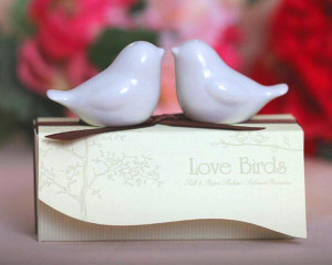 Solnite sare si piper Love Birds