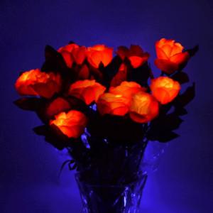 Trandafir rosu cu LED