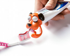 Capac pasta de dinti catelus