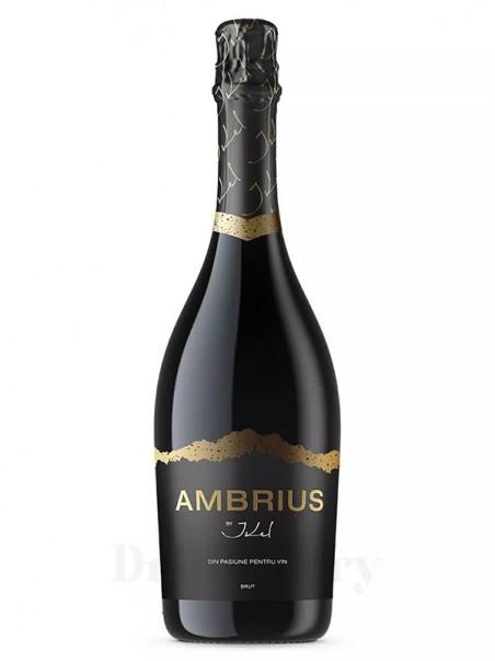 Ambrius by Ikel Spumant Aprisecco Alb Brut Pahar 0.75L