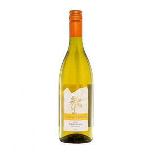 Punta Nogal Chardonnay white