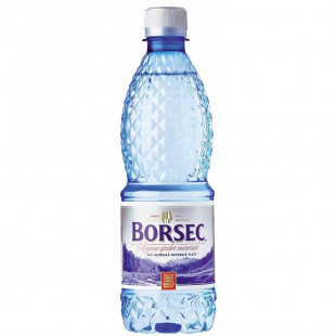 Borsec Apa Minerala Plata 500ml 12 sticle/bax