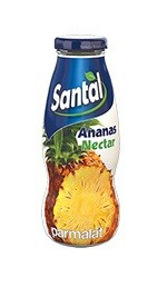 Santal Planet Bar Ananas Nectar 200ml