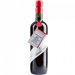 Vincon Comoara Pivnitei, Pinot Noir, 2011, Demisec, 13%, 0.75L