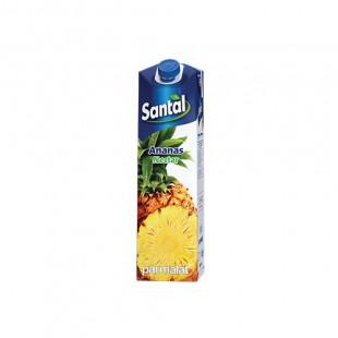 Santal Ananas Nectar 50% 1L