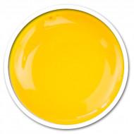 Gel Color - N27