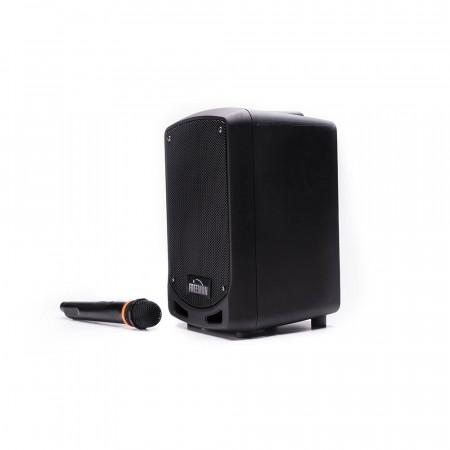 Produs Resigilat - Boxa Freeman Karaoke 1002 Mini cu microfon Bluetooth USB Radio FM TF Card Aux Mp3 player