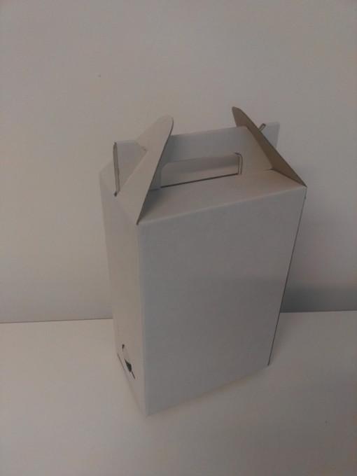 Poze Cutie 3L BAG-IN-BOX L