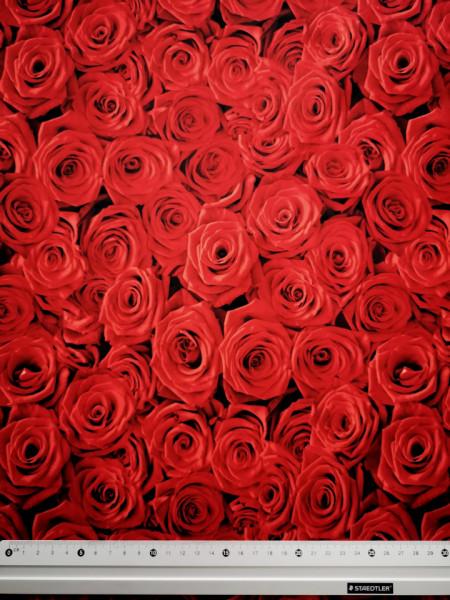 Egy csokor vörös rózsa PUL anyag modern mosható pelenka készítéséhez