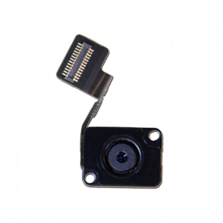 Flex camera spate iPad Mini swap