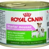 Royal Canin Starter Mousse 195gr
