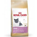Royal Canin British Shorthair kitten 400 gr