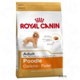 Royal Canin Poodle adult 1.5 kg