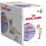 Royal Canin Digest Sensitive (preliv) 85 gr