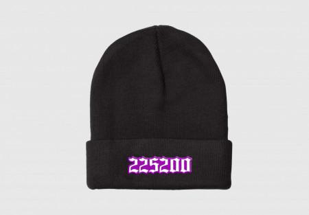 Căciulă Purple 225200
