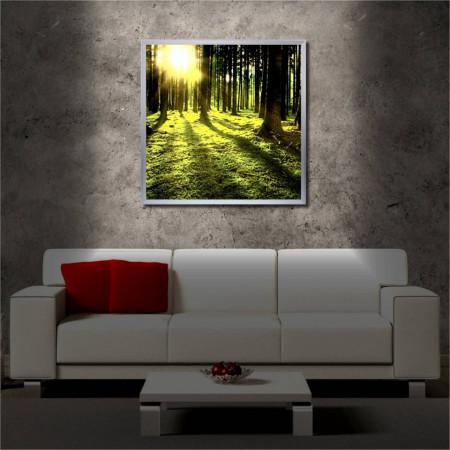 Tablou iluminat LED cu rama metalica Green Wood (60 x 60 cm)