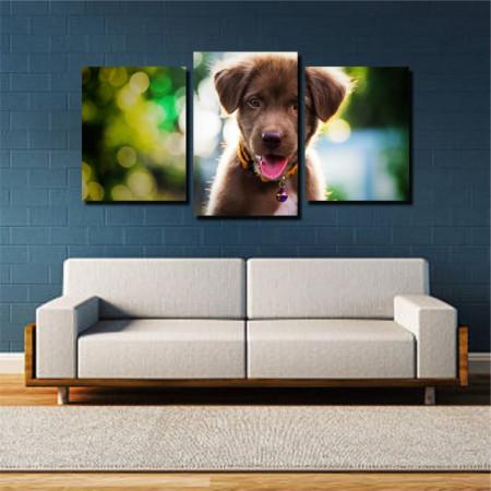 Tablou canvas pe panza animals 8 - KM-CM3-ANM8