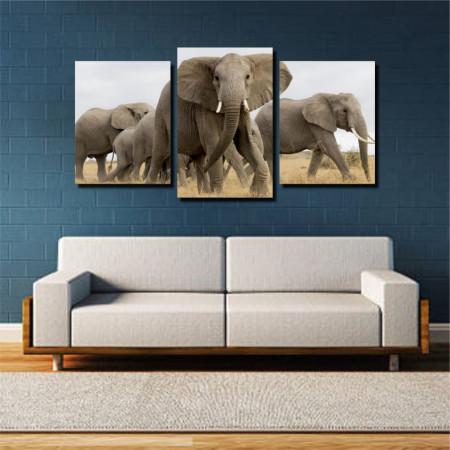 Tablou canvas pe panza animals 9 - KM-CM3-ANM9