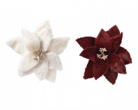 Floare, Craciunita de plus, 23 cm