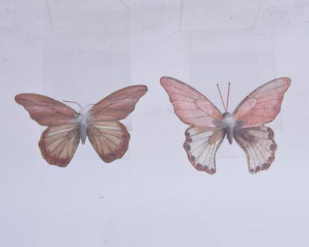 Fluture alb/roz, 20x14.5 cm