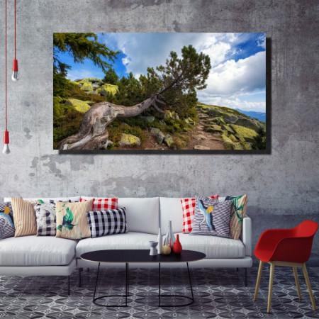 Tablou canvas pe panza landscape 29 - KM-CM1-LND29