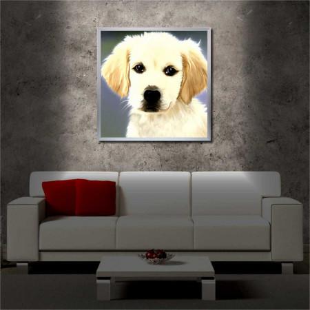 Tablou iluminat LED cu rama metalica Cute Dog (60 x 60 cm)