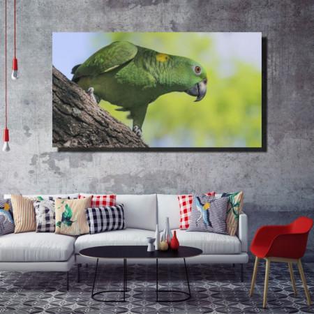 Tablou canvas pe panza animals 1 - KM-CM1-ANM1