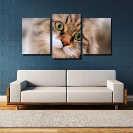 Tablou canvas pe panza animals 13 - KM-CM3-ANM13