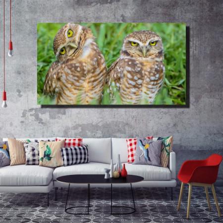 Tablou canvas pe panza animals 2 - KM-CM1-ANM2