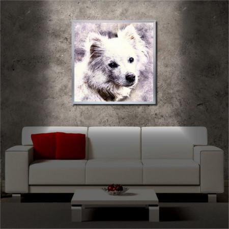 Tablou iluminat LED cu rama metalica Cute White Dog (60 x 60 cm)