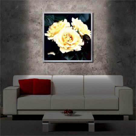 Tablou iluminat LED cu rama metalica White Rose (60 x 60 cm)