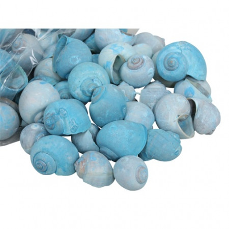 Set scoici albastre, punga mare, 500 gr