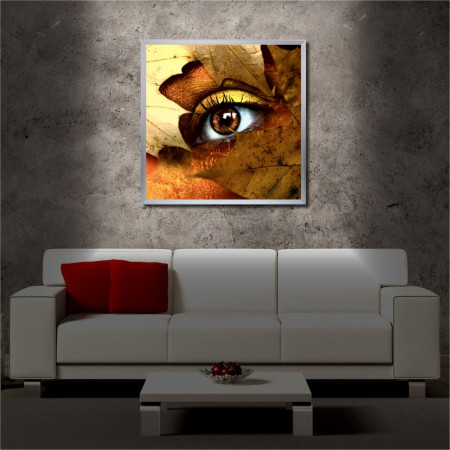 Tablou iluminat LED cu rama metalica The Eye (60 x 60 cm)