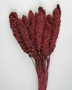 Flori uscate, Ciumiza, bordo, 100 g