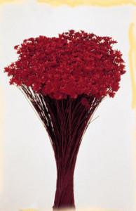 Flori uscate, Glixia, 50g, visiniu