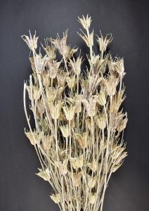 Buchet flori uscate, Nigella, natur, 100gr