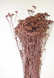 Buchet flori uscate, Tansy, roz