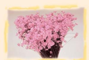 Flori uscate, Glixia, roz deschis, 50g