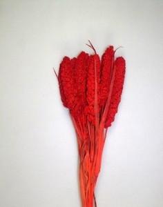 Flori uscate, Ciumiza, rosu, 100 g
