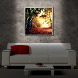 Tablou iluminat LED cu rama metalica The Meadow (60 x 60 cm)