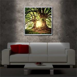 Tablou iluminat LED cu rama metalica Old Trees (60 x 60 cm)