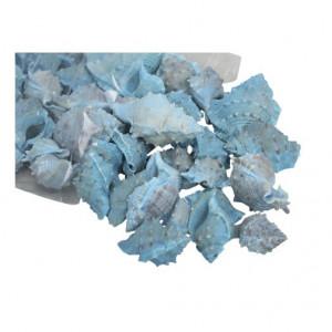 Set scoici albastre, punga medie, 500 gr