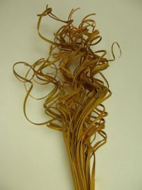 Curly Ting Ting, 45 cm