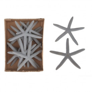 Set 14 stele albastre de mare, 10-12 cm