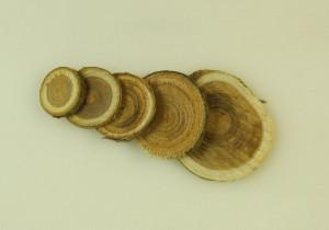 Felii de lemn, rotunde, 230g