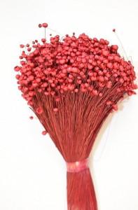 Flori uscate, Glixia, rosu, 75g